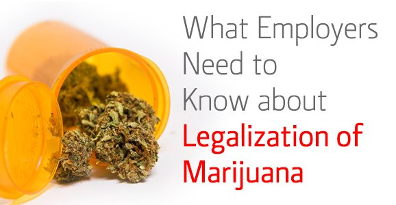 3-13-14_verifirst_what-employers-need-to-know-about-legalization-marijuana